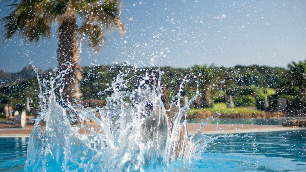 Spetters in een zwembad met palmboom op Sardinië